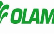 Olam offers to acquire Dangote Flour Mills for N130b