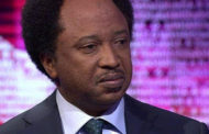 PDP should recall all past members for Buhari to probe- Shehu Sani
