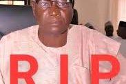 Adamawa lawmaker slumps, dies at political meeting